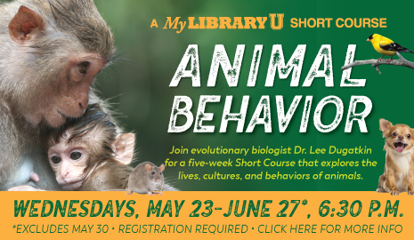 Click here for more info about the Animal Behavior Short Course or for registration information